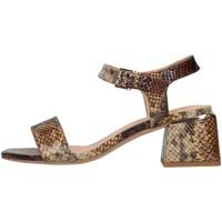 Čevlji  Ženske Sandali & Odprti čevlji Alma Blue V21BL8700 BEIGE