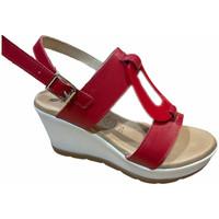 Čevlji  Ženske Sandali & Odprti čevlji Susimoda SUSI2021ros rosso