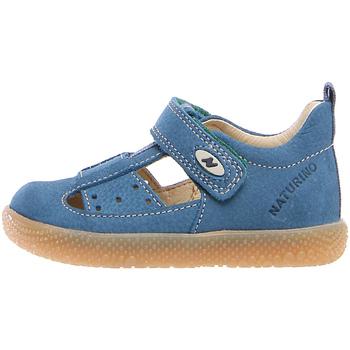 Čevlji  Otroci Sandali & Odprti čevlji Falcotto 2012531 91 Modra