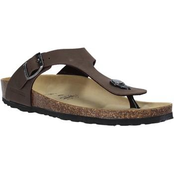 Čevlji  Moški Japonke Valleverde G51830 Drugi