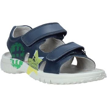 Čevlji  Otroci Sandali & Odprti čevlji Naturino 502849 01 Modra