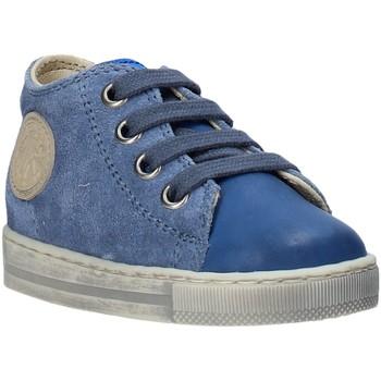 Čevlji  Otroci Nizke superge Falcotto 2014600 12 Modra