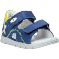 Čevlji  Otroci Sandali & Odprti čevlji Falcotto 1500892 01 Modra