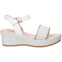 Čevlji  Deklice Sandali & Odprti čevlji Alviero Martini 0647 0911 Biely