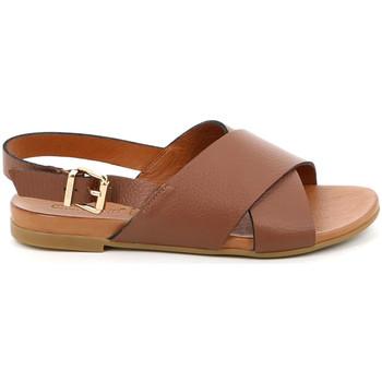 Čevlji  Ženske Sandali & Odprti čevlji Grunland SA2348 Rjav