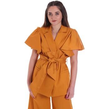 Oblačila Ženske Jakne & Blazerji Cristinaeffe 0308 2491 Rumena