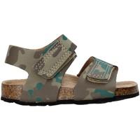 Čevlji  Otroci Sandali & Odprti čevlji Balducci AG-1558 Rjav