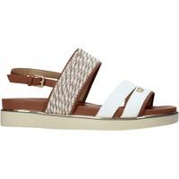 Čevlji  Ženske Sandali & Odprti čevlji Wrangler WL11704A Biely
