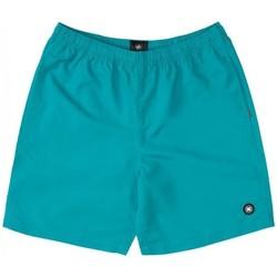 Oblačila Dečki Kopalke / Kopalne hlače DC Shoes BAÑADOR PISCINA NIÑO DC EDBWS03069 Zelena