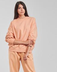 Oblačila Ženske Puloverji Levi's WFH SWEATSHIRT Rožnata