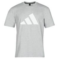 Oblačila Moški Majice s kratkimi rokavi adidas Performance M FI 3B TEE Bruyère / Siva