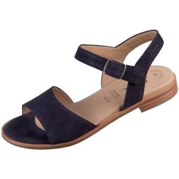 Čevlji  Ženske Sandali & Odprti čevlji Sioux Cosinda Črna