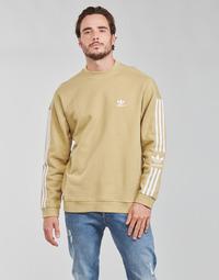 Oblačila Moški Puloverji adidas Originals LOCK UP CREW Bež