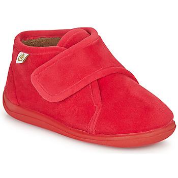 Čevlji  Otroci Nogavice Citrouille et Compagnie HALI Rdeča