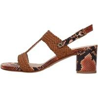 Čevlji  Ženske Sandali & Odprti čevlji Albano 8074 BROWN
