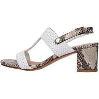 Čevlji  Ženske Sandali & Odprti čevlji Albano 8074 GREY