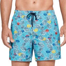 Oblačila Moški Kopalke / Kopalne hlače Impetus 1951J45 K41 Modra