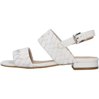 Čevlji  Ženske Sandali & Odprti čevlji Apepazza S1PETIT18/VEG WHITE