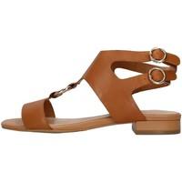 Čevlji  Ženske Sandali & Odprti čevlji Apepazza S1PETIT19/LEA BROWN