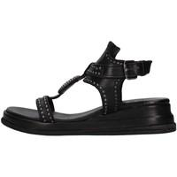 Čevlji  Ženske Sandali & Odprti čevlji Zoe CHEYENNE02 BLACK