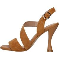 Čevlji  Ženske Sandali & Odprti čevlji Luciano Barachini GL263R BROWN