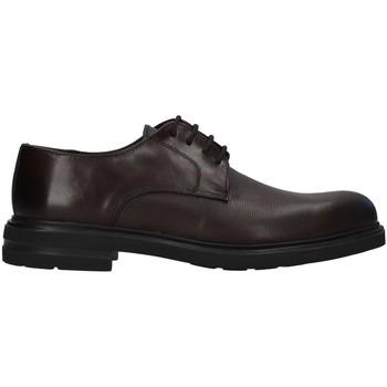 Čevlji  Moški Čevlji Derby Antony Sander 720 BROWN