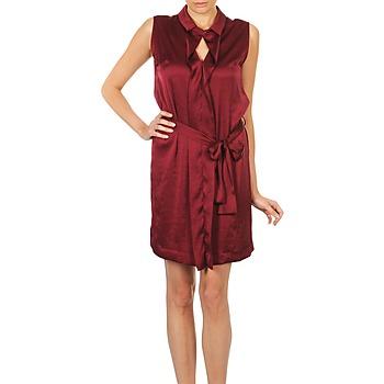 Oblačila Ženske Kratke obleke Lola ROSE ESTATE Bordo