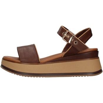 Čevlji  Ženske Sandali & Odprti čevlji Inuovo 774011 BROWN