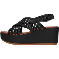 Čevlji  Ženske Sandali & Odprti čevlji Inuovo 123064 BLACK