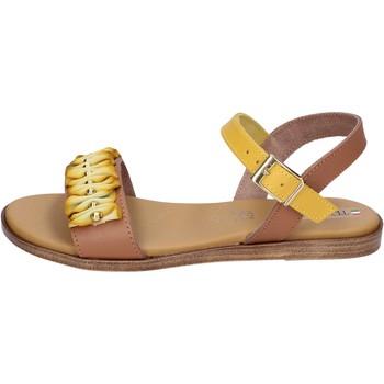 Čevlji  Ženske Sandali & Odprti čevlji Tredy's BH93 Rjav