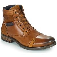 Čevlji  Moški Polškornji Redskins NITRO Cognac