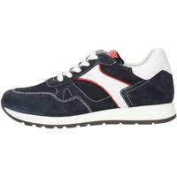 Čevlji  Moški Mokasini Made In Italia 0380 Leather