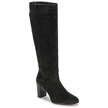 Čevlji  Ženske Mestni škornji    Fericelli PINO Črna
