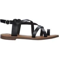 Čevlji  Ženske Sandali & Odprti čevlji Refresh 72655 Črna