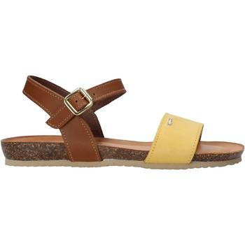 Čevlji  Ženske Sandali & Odprti čevlji IgI&CO 7184322 Rjav