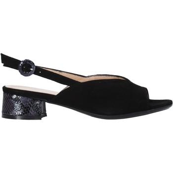 Čevlji  Ženske Sandali & Odprti čevlji Soffice Sogno E2154 Črna
