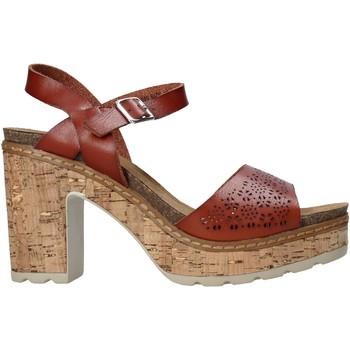 Čevlji  Ženske Sandali & Odprti čevlji Refresh 72690 Rjav