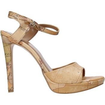Čevlji  Ženske Sandali & Odprti čevlji Alviero Martini E130 8391 Rjav
