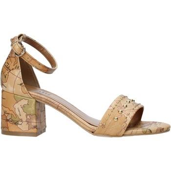 Čevlji  Ženske Sandali & Odprti čevlji Alviero Martini E121 8391 Rjav