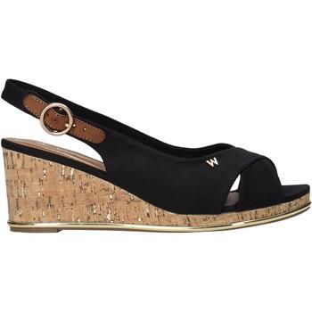 Čevlji  Ženske Sandali & Odprti čevlji Wrangler WL11653A Črna