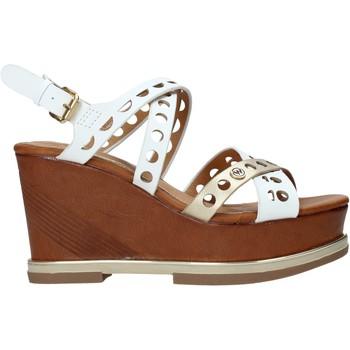 Čevlji  Ženske Sandali & Odprti čevlji Wrangler WL01570E Rjav