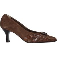 Čevlji  Ženske Salonarji Confort 6260 Rjav