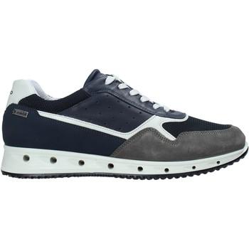 Čevlji  Moški Nizke superge IgI&CO 7121100 Modra