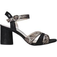 Čevlji  Ženske Sandali & Odprti čevlji Valleverde 28270 Črna