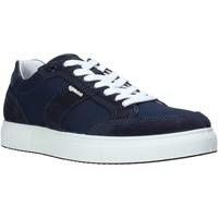 Čevlji  Moški Nizke superge IgI&CO 5138800 Modra
