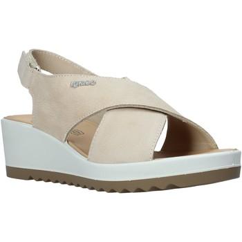 Čevlji  Ženske Sandali & Odprti čevlji IgI&CO 5177011 Bež