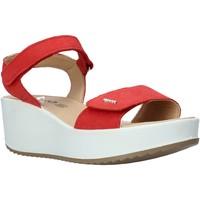Čevlji  Ženske Sandali & Odprti čevlji IgI&CO 5178166 Rdeča