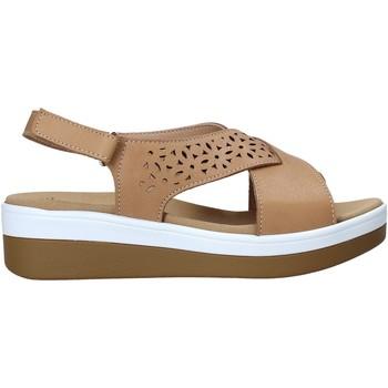 Čevlji  Ženske Sandali & Odprti čevlji Susimoda 2011 Rjav