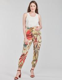 Oblačila Ženske Lahkotne hlače & Harem hlače Desigual TOUCHE Večbarvna