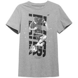 Oblačila Moški Majice s kratkimi rokavi 4F TSM011 Siva
